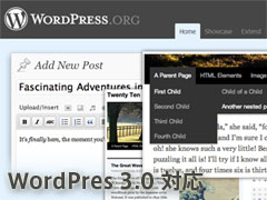 WordPress 3.0 対応